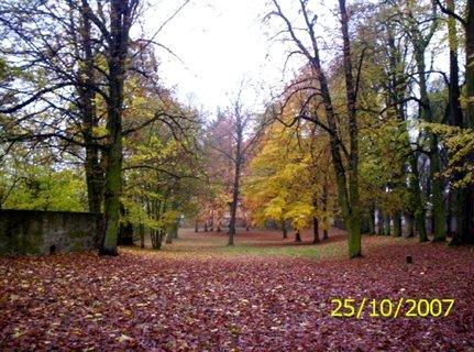 FOTKA - Park v Brtnici