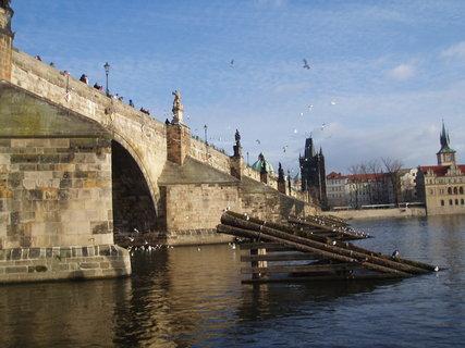 FOTKA - Praha - 21.12.08 ...