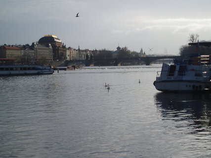 FOTKA - Praha - 21.12.08 ....