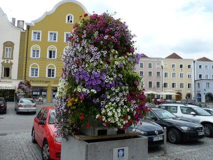 FOTKA - Letní Scharding