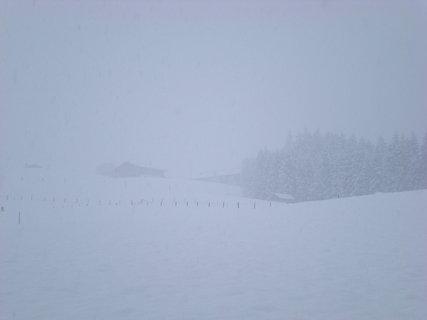 FOTKA - Začala zima 6