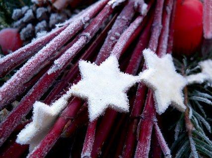 FOTKA - Vánoční omrzlá výzdoba na zahrádce