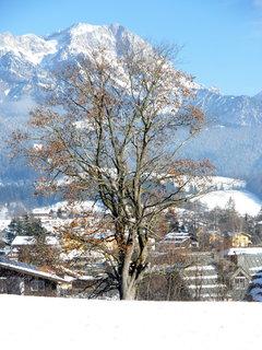 FOTKA - Pohled na Saalfelden z vyhlídky Mühlrain 8