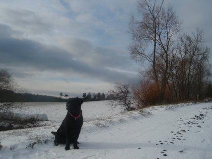 FOTKA - S Dorinkou na procházce