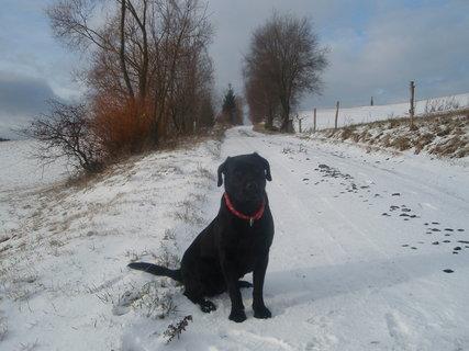FOTKA - S Dorinkou na procházce.