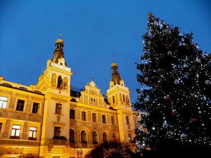 FOTKA - Radnice s vánočním stromem