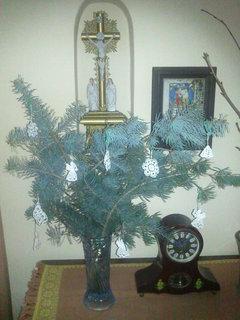 FOTKA - Vánoce 2011..