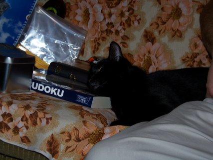 FOTKA - Štědrý večer 24.12.2011, večerní únava...