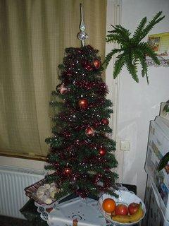 FOTKA - náš vánoční stromeček 2011