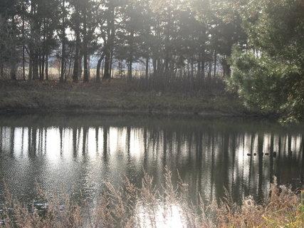 FOTKA - Zimní řeka 1