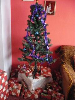FOTKA - stromeček s dárky 2 (u babičky)