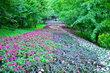 květinová řeka