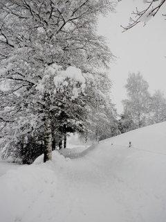 FOTKA - Dnešní procházka 3