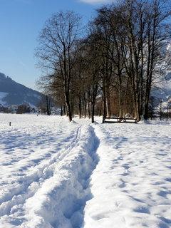 FOTKA - Zimní idyla 15