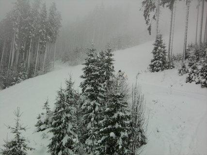 FOTKA - Příroda v zimě