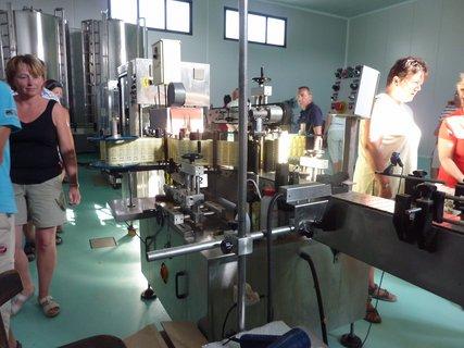 FOTKA - Výrobna olivového oleje IV