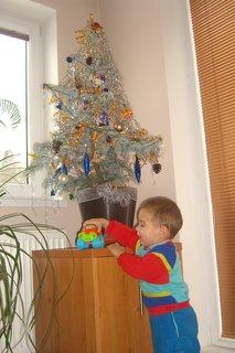 FOTKA - Maťko  a stromček 4