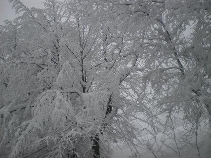 FOTKA - Zima čaruje17