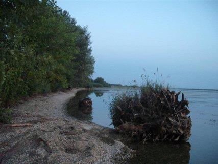 FOTKA - na brehu Dunaja