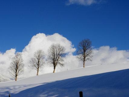 FOTKA - Na Ritzensee 17