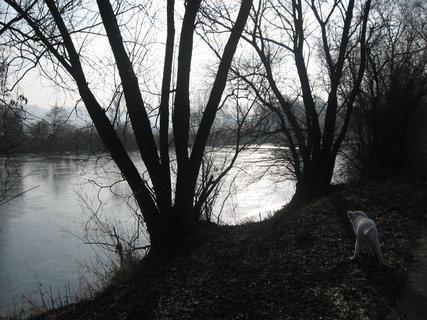 FOTKA - Zimní řeka 7