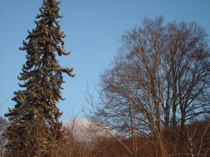 FOTKA - příroda******