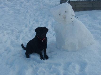FOTKA - Dora a sněhová kočka