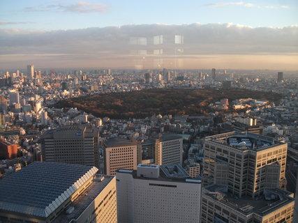 FOTKA - park uprostřed mrakodrapů