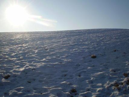FOTKA - sluníčko svítí, ale je zima