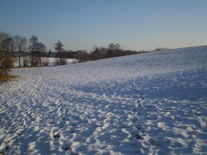 FOTKA - zimní příroda