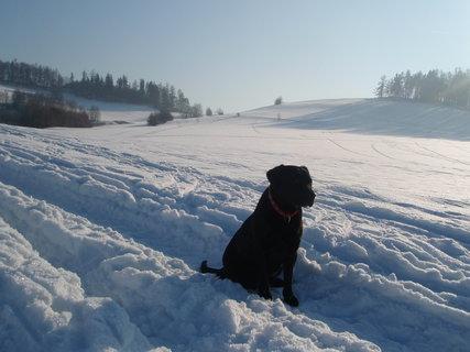FOTKA - S Dorinkou na zmrzlé procházce.