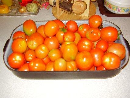 FOTKA - rajčata