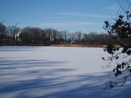 FOTKA - u rybníka  - 18.1.2012 .