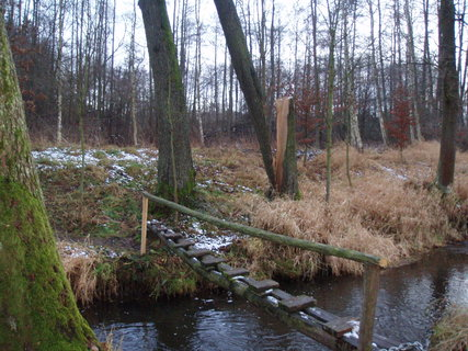 FOTKA - u potoka - 26.12.2011 .