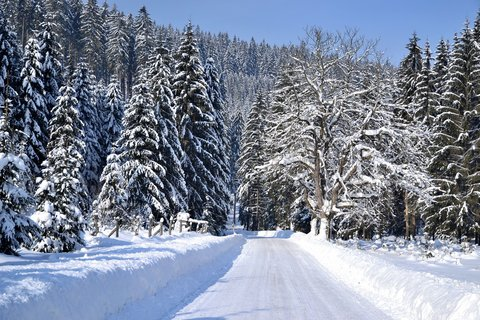 FOTKA - zimní cesta do ticha hor