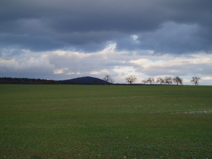 FOTKA - z procházky 31.12.2011 .