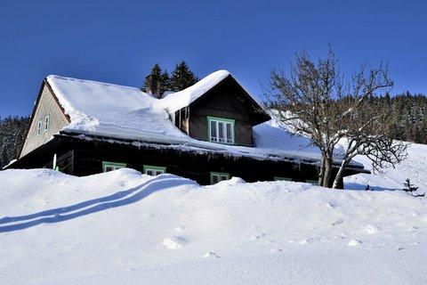 FOTKA - V zajetí zimy