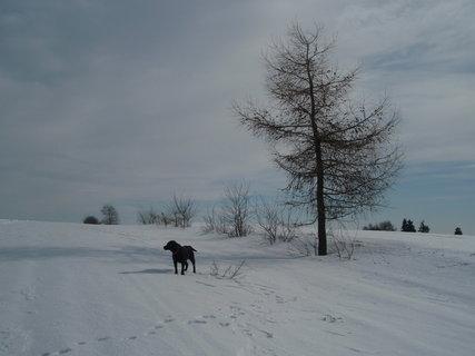 FOTKA - S Dorou na procházce.