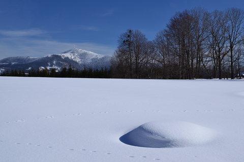 FOTKA - Zimní malovánky