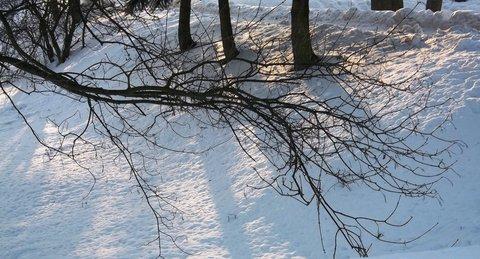 FOTKA - Zima...