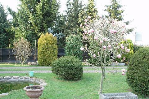 FOTKA - zahrada,