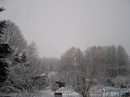 FOTKA - sníh 26.2.