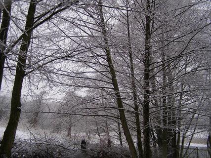 FOTKA - sníh 26.2.2012