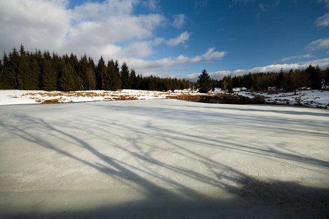 FOTKA - Velký Radní rybník....