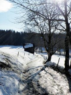 FOTKA - U Ritzensee 5