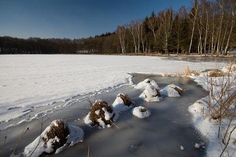 FOTKA - Ovčí rybník
