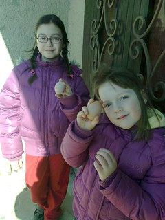 FOTKA - zbierame vajíčka - upečieme koláčik