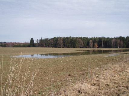 FOTKA - zaplavené pole