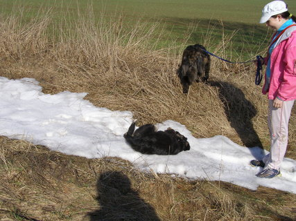 FOTKA - poslední zbytky sněhu