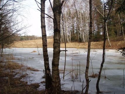 FOTKA - zbytky zimy